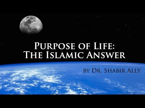 a discussion of the purpose of life Study after study shows the importance of having a sense of purpose having a  direction and an overarching meaning in life helps you live longer, helps buffer.