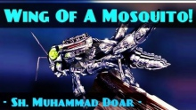 Chasing The Wing Of A Mosquito! ᴴᴰ ┇ Powerful Speech ┇ Sheikh Muhammad Doar ┇ The Daily Reminder ┇