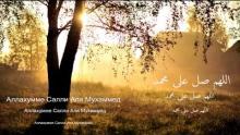 My collection of Nasheed 10 vqra iman