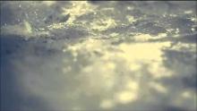 Опрощаващият греховете - Нашиид