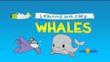 Let's Learn About Whales with Zaky (with Arabic Text)