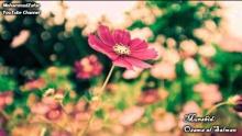 Zahrat (Peaceful Nasheed) | الزهرات -  أسامة السلمان | Osama al Salman