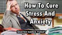 How To Cure Stress and Anxiety - Shaykh Hamza Yusuf