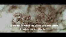 'From Shaban to Paradise' | شعبان، رمضان طريقك إلي الجنة | A new beginning