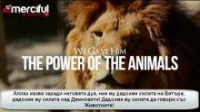 Как Сюлейман AC контролирал джиновете и говорел със животните!