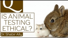 Q&A: Is Animal Testing Ethical? | Dr. Shabir Ally