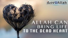 Allah Can Bring Life To The Dead Heart