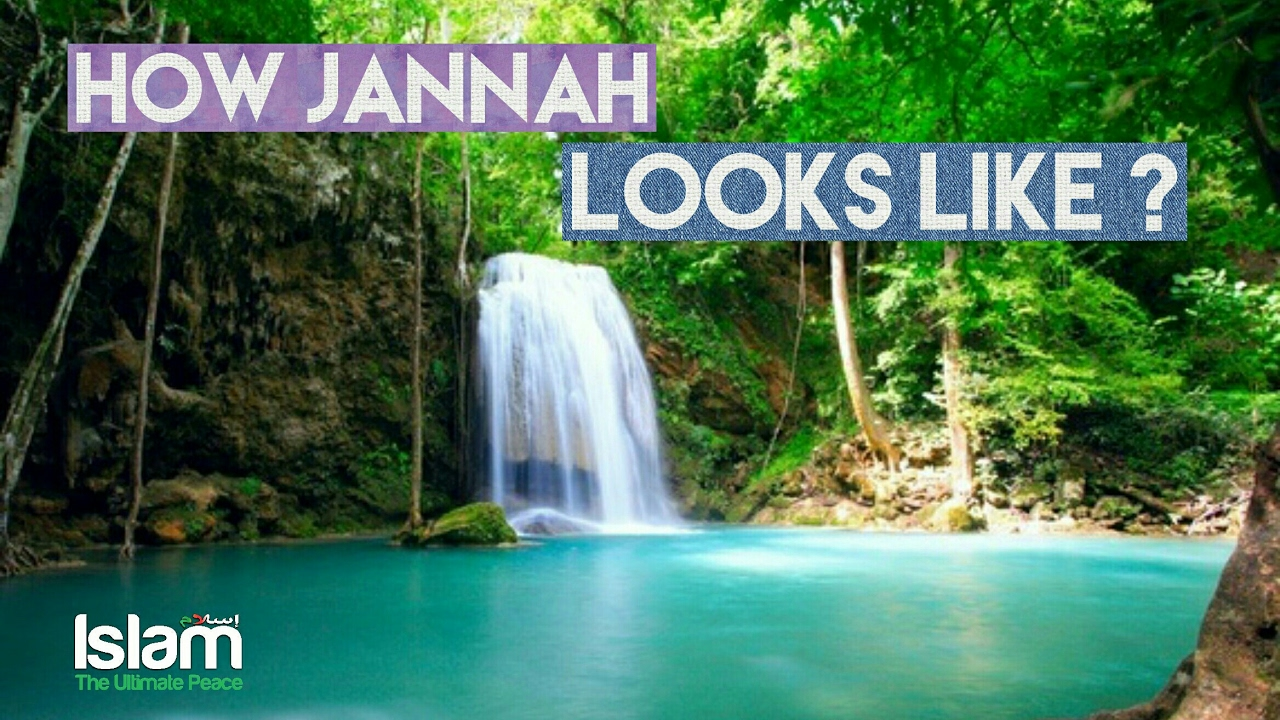 How Jannah looks like ? Sheikh Omar Suleiman