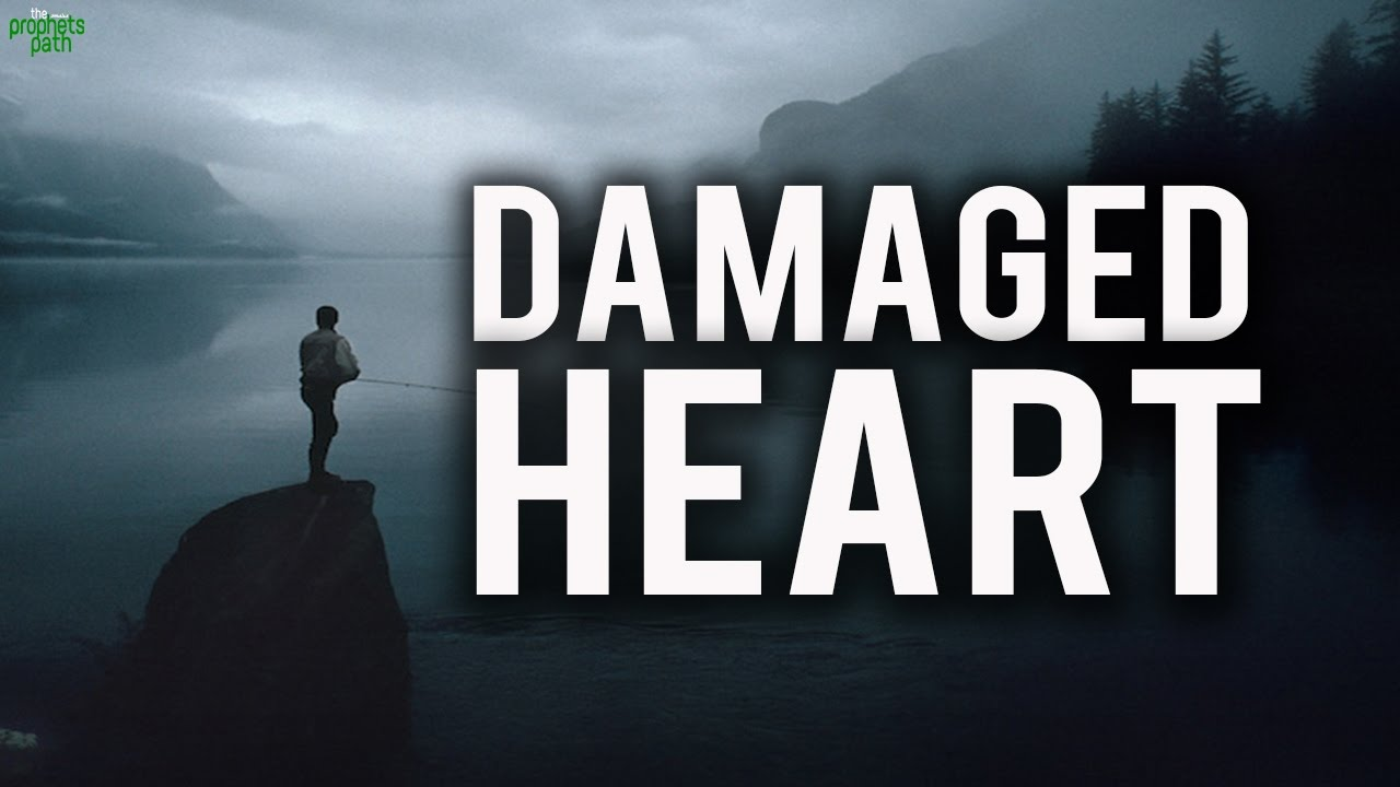 The Damaged Heart