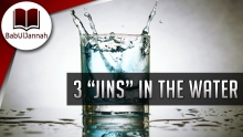 "3 ""JINS"" In The Water! - Muftí Menk (Funny) 
