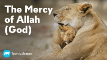 The Mercy of Allah (God)