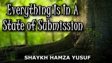 Everything Is In A State of Submission - Shaykh Hamza Yusuf