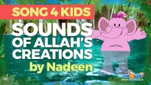 New Song for Kids - Sounds of Allah's Creations