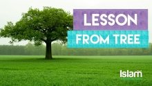 A BEAUTIFUL LESSON FROM THE TREE | MUFTI MENK 2018