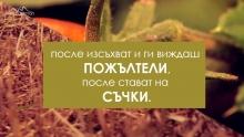 Какво е земният живот...?!