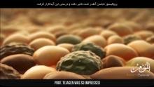 Невероятно факти за човешката кожа - доказани от Корана