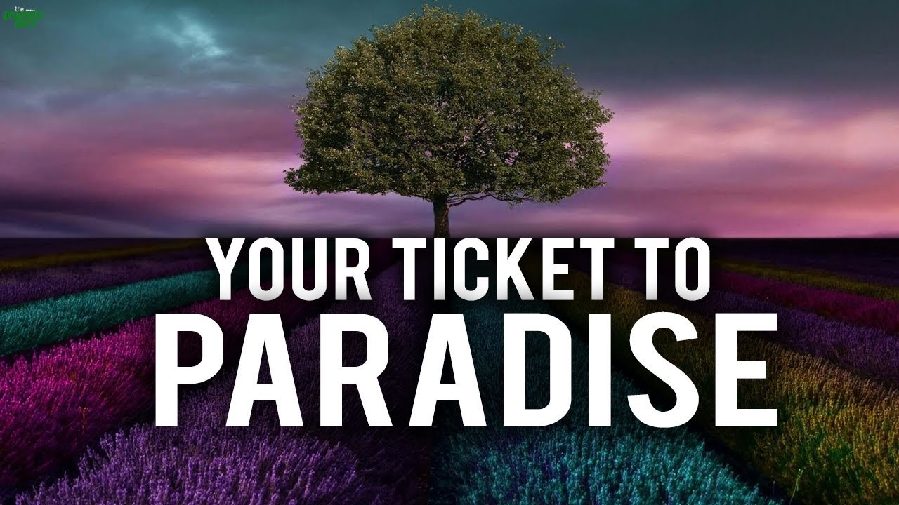 MAKE YOUR PHONE A TICKET TO PARADISE
