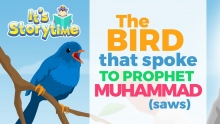 Storytime - The Bird that Spoke to Prophet Muhammad (saws)