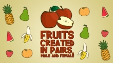 Fruits Created in Pairs Male and Female | Miracles of the Quran