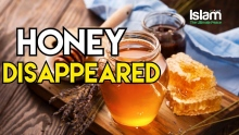 HONEY DISAPPEARED !  MUFTI MENK