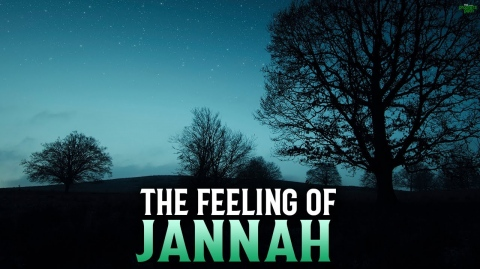 THIS IS HOW YOUR JANNAH WILL FEEL LIKE 1