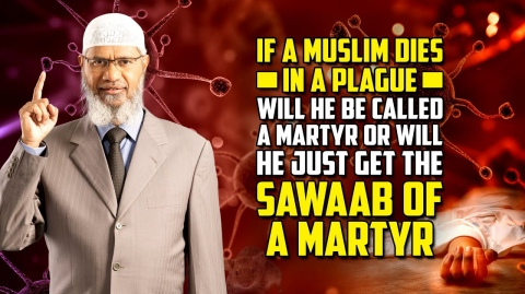 If a Muslim Dies in a Plague will he be Called a Martyr or will he just get the Sawaab of a Martyr