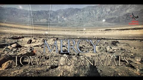Story Of Mercy Towards Animals